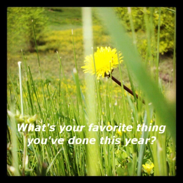What's your favorite thing you've done this year?